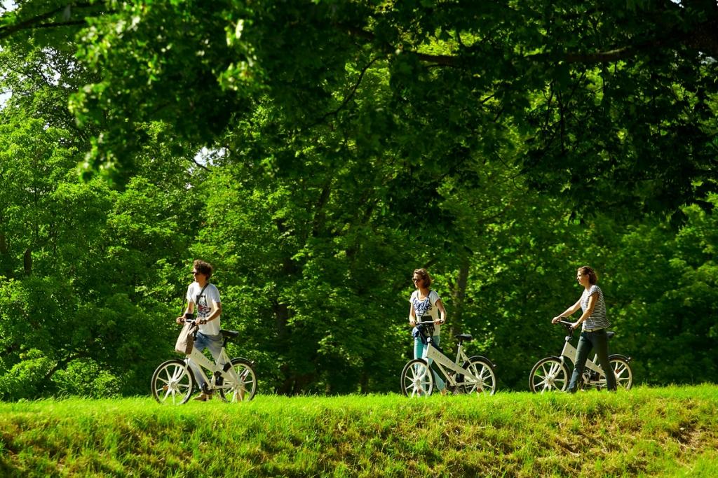 Велосипедная столица Европы