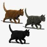 три кошки.jpg