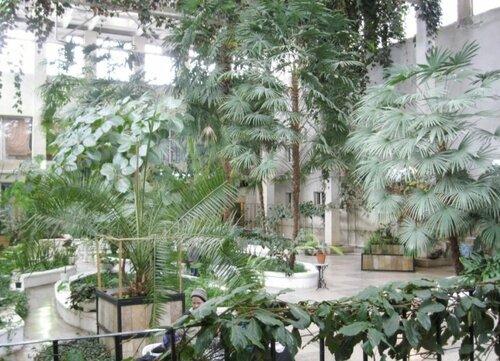Ботанический сад в Каслях (02.04.2013)