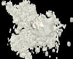 CaliDesignForourLife_Elements (11).png