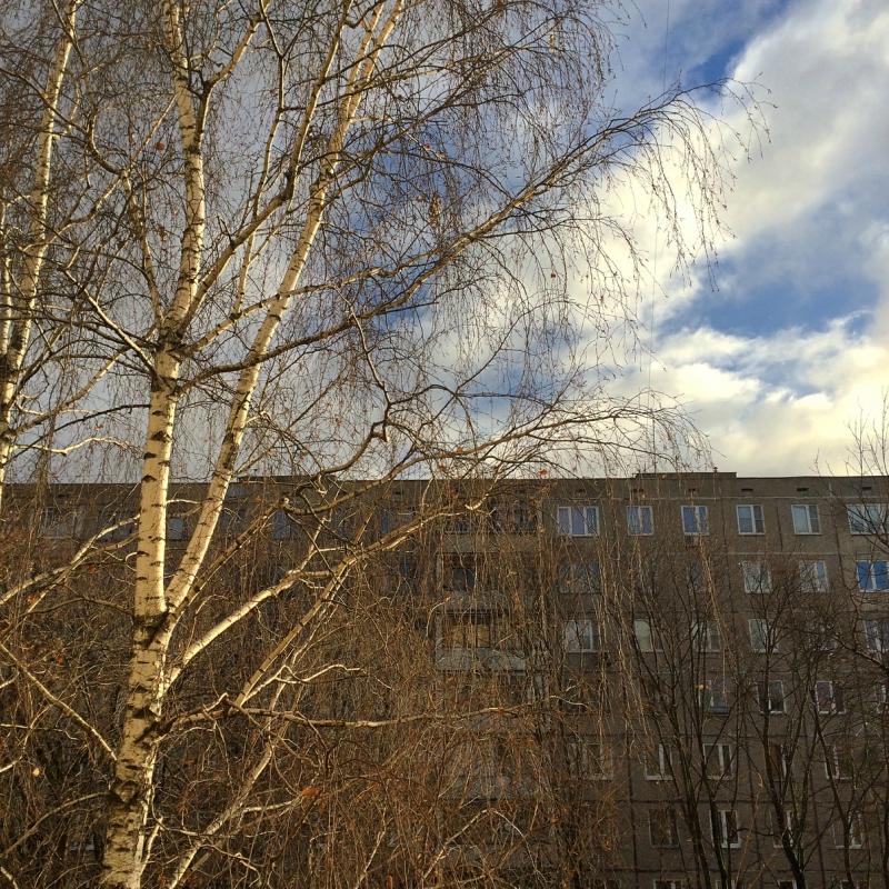 Окна напротив конца года