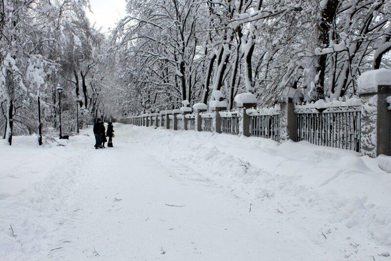 Ограда стадиона Динамо