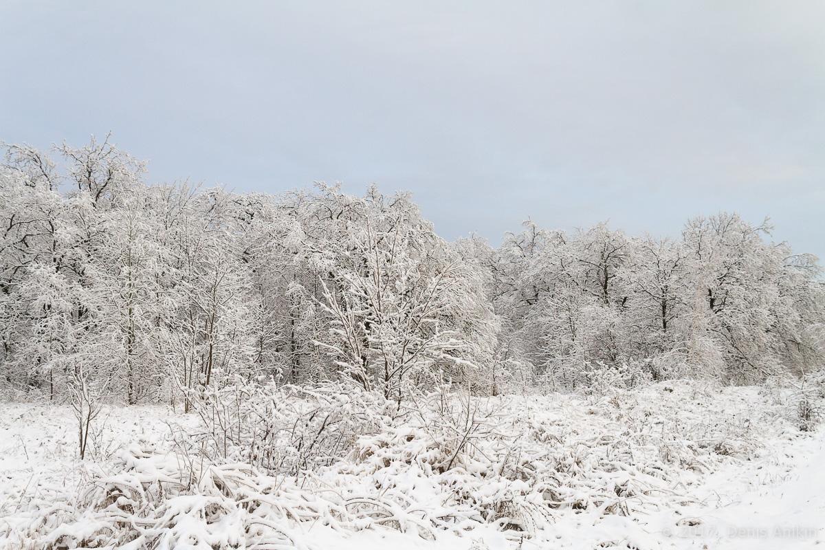 кумыска зима дорога фото 3