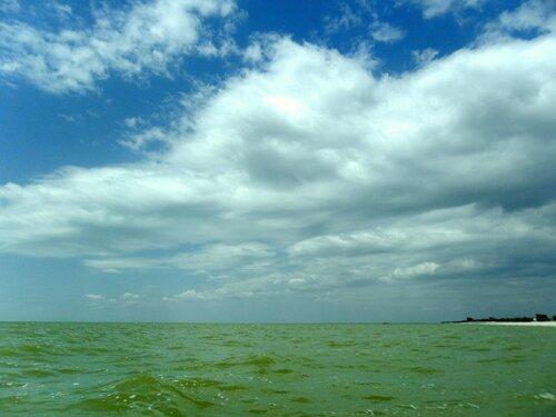 На море, июль