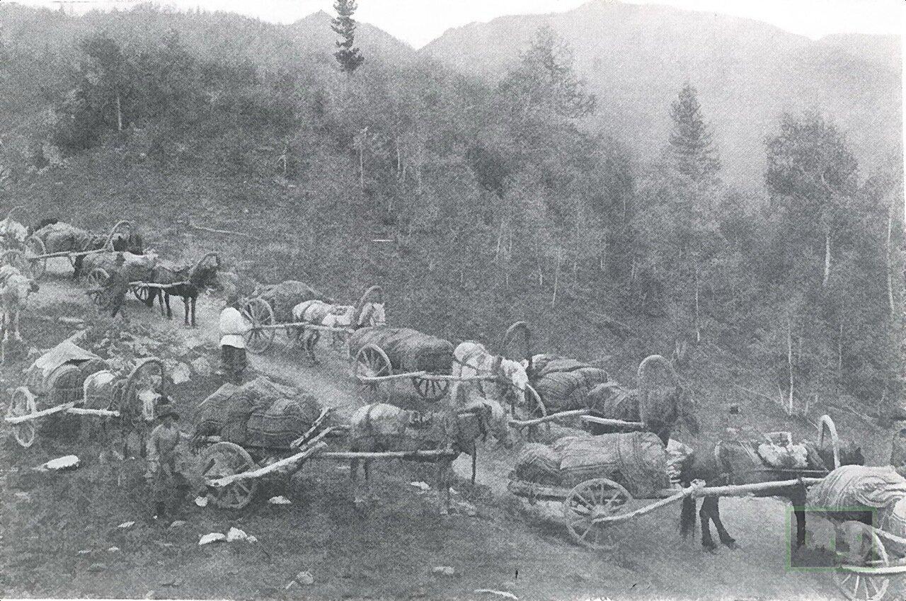 Караван на торговом тракте.1906.
