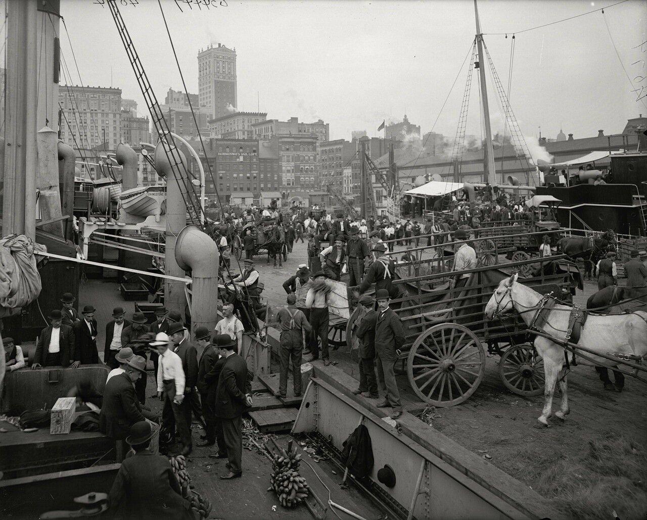 Банановый пирс, Нью-Йорк, примерно1890-1910 гг.