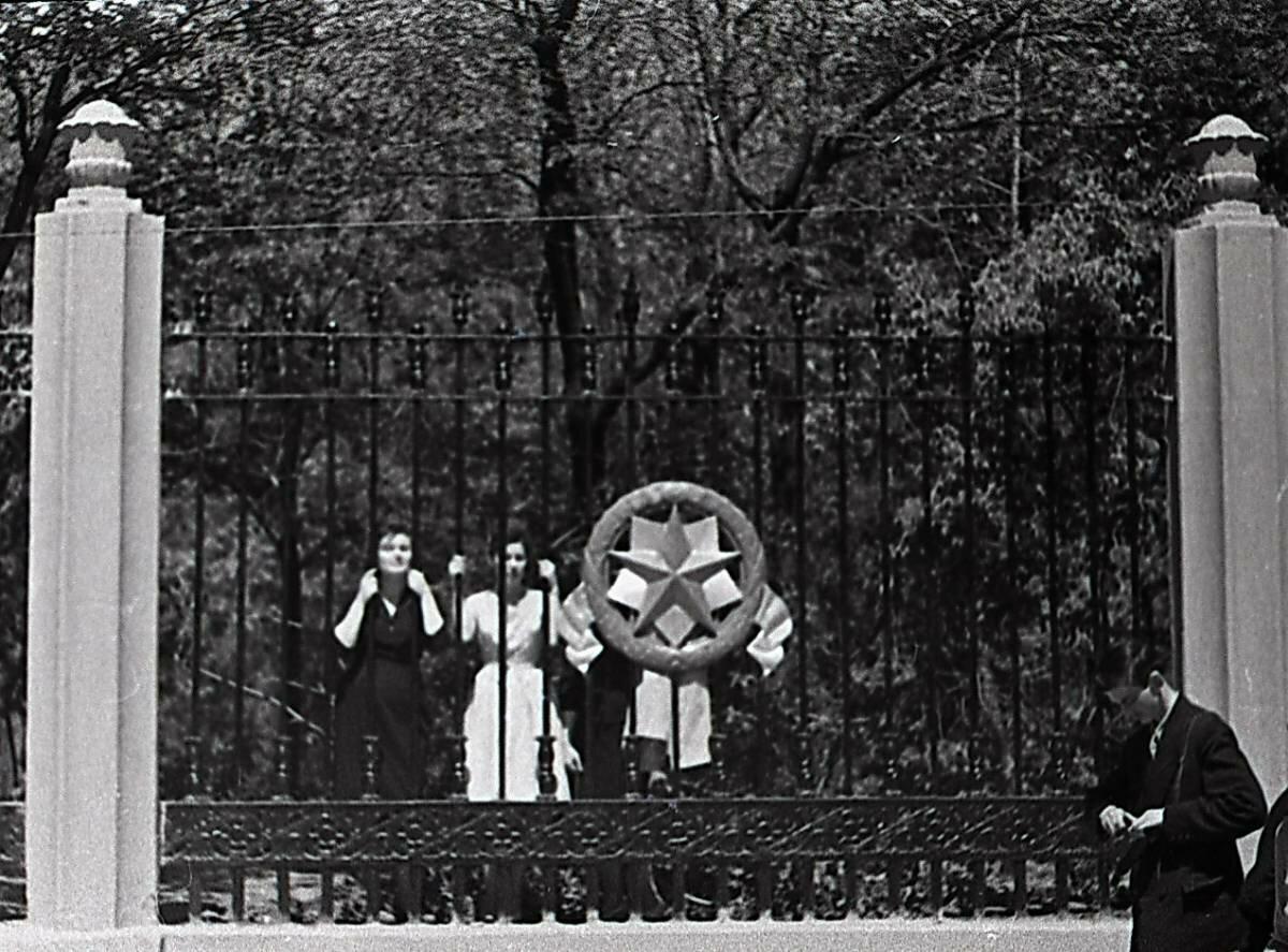 Фрагмент решетки парка Революции