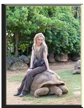 Сейшелы. Giant turtle in La Vanille Reserve park. Фото Konstantin Kulikov - Depositphotos