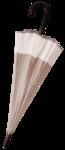 зонт (19).png
