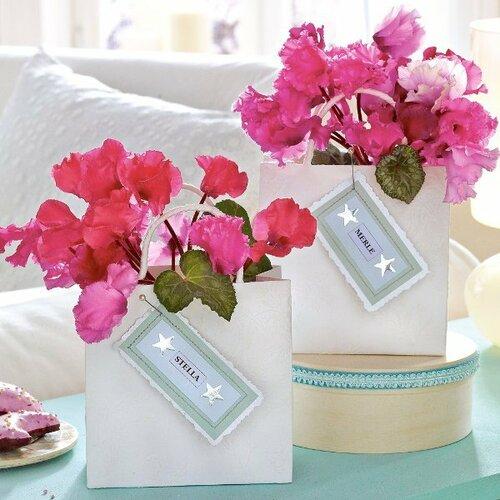 выращивание комнатных цветов нужно ли?