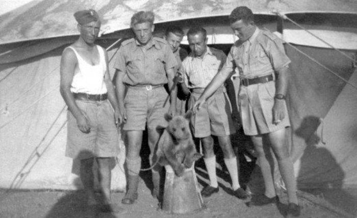 Необычный солдат Второй мировой