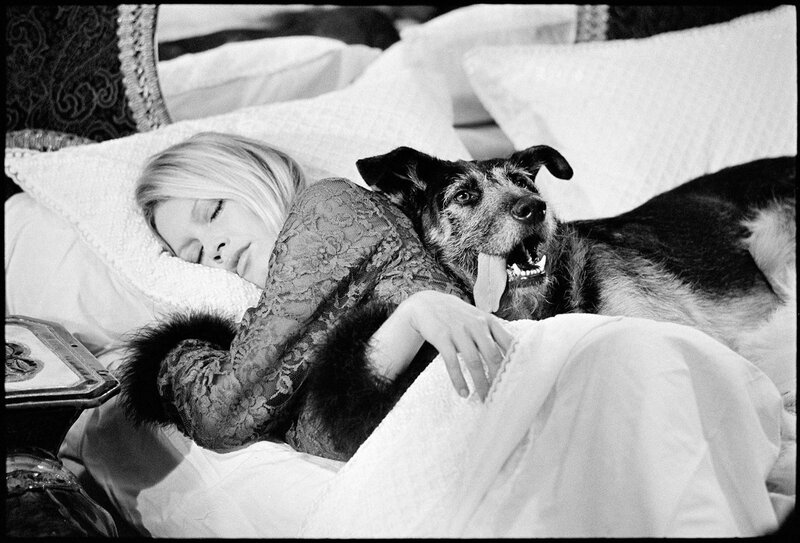 Brigitte Bardot with dog on bed.