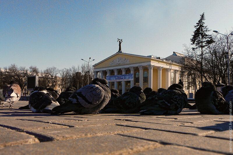 Белгород. Вид на Соборную площадь