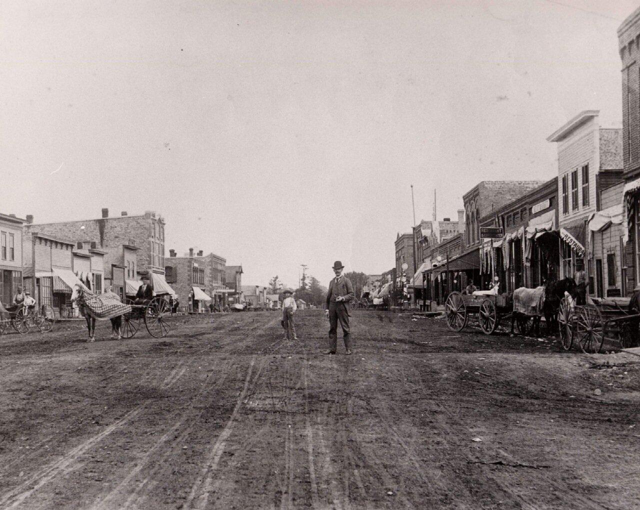 Главная улица, ок. 1880 г.