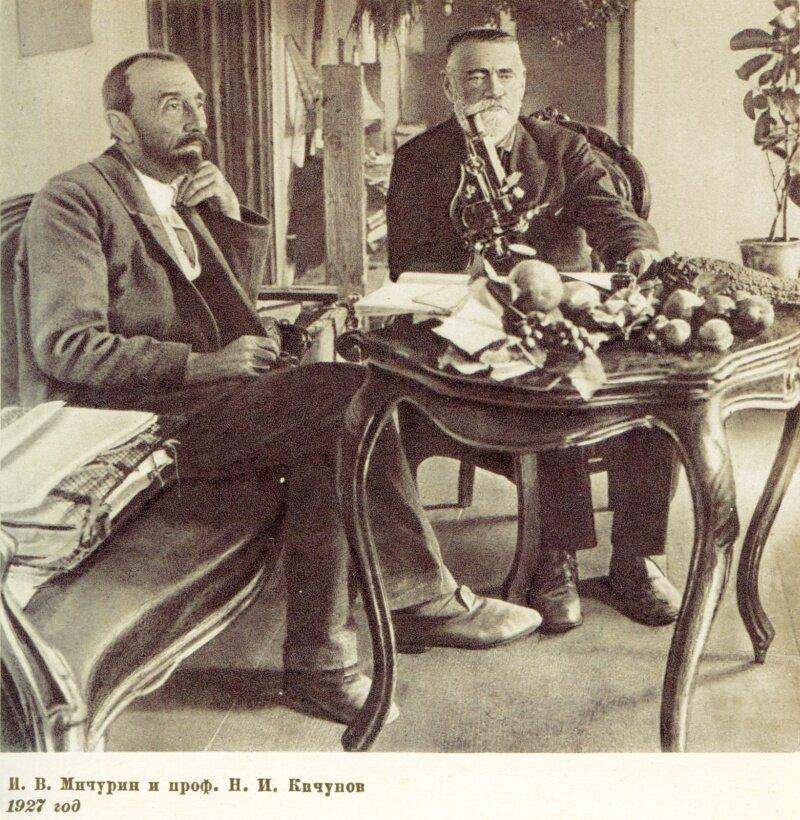 И.В. Мичурин и проф. Н.И.Кичунов, 1927 год
