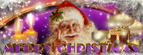 Merry_Christmas_650x250_7.png