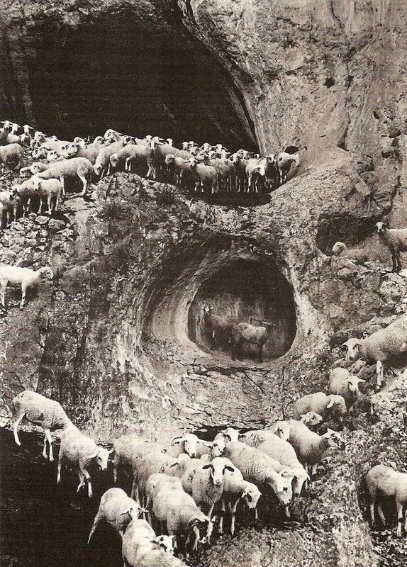 """George Krause, """"The Cave of Sheep"""""""