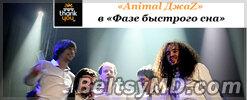 Новый альбом «Animal ДжаZ» — «Фаза быстрого сна»