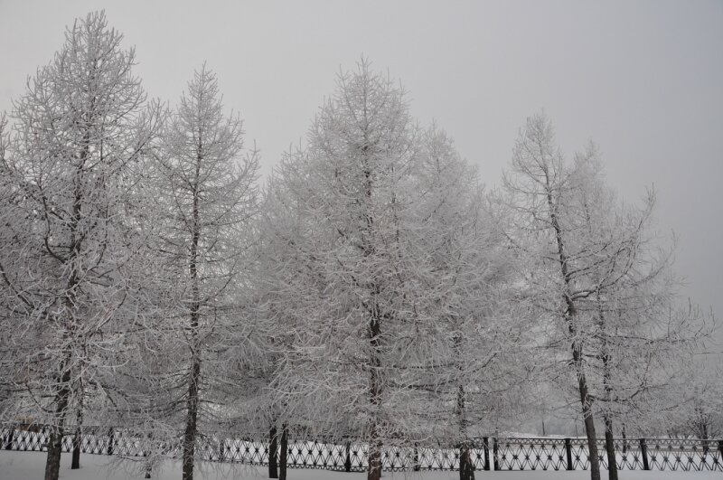 http://img-fotki.yandex.ru/get/4126/25708572.7e/0_90ee2_ea6778d2_XL.jpg