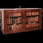 bookshelves18.png