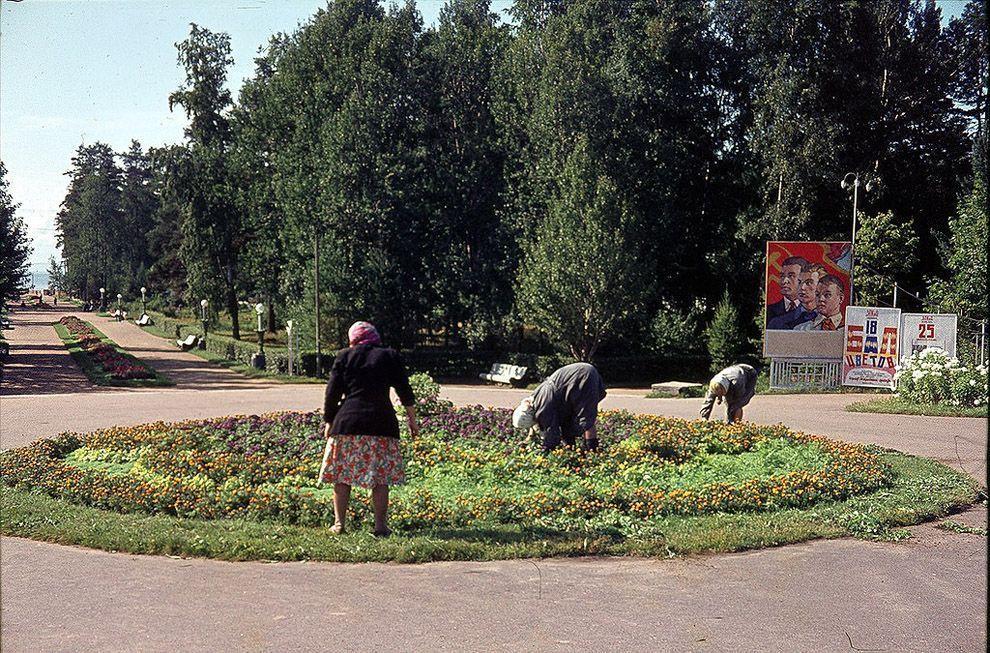 28. В СССР всегда знали толк в озеленении. Парк в Зеленогорске под Ленинградом.