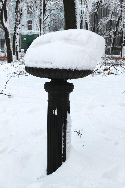 Снег в вазоне