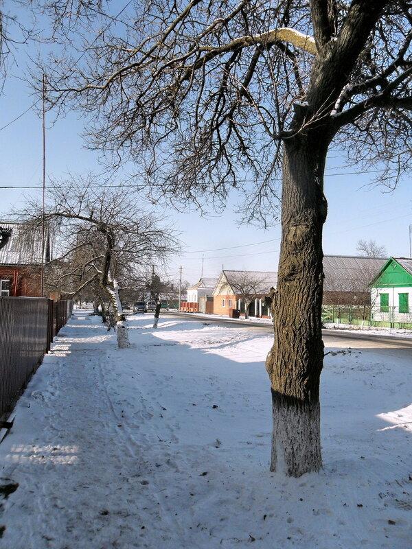 Зимние картинки, декабрь 2012