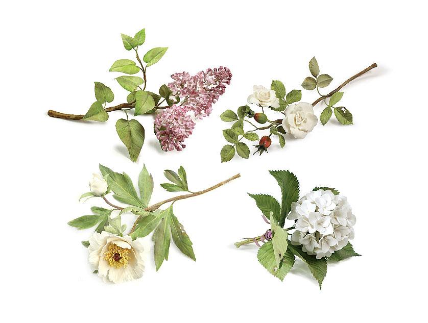 Разные-цветы1.jpg