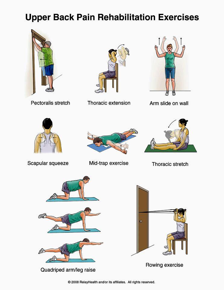 Упражнение №1 (pectoralis