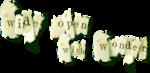 ldavi-wheretonowdreamer-wordart26b.png