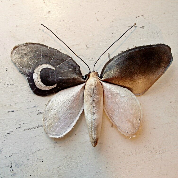 Коллекцию бабочек и моли сшить не хотите А мистер Финч шьет) (30) (630x700, 221Kb)