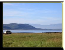 Кения. Озеро Накуру. Фото imagex - Depositphotos