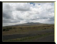 Кения. По дороге на озеро Накуру