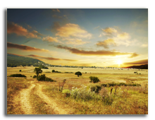 Кения. Фото kamchatka - Depositphotos