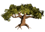 GC_EF_tree_4.png