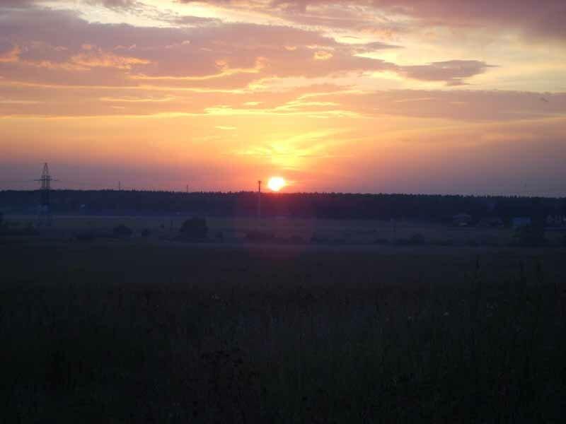 на закате (поле у села Перхушково, Одинцовский район М.о.)