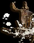RR_WinterWhite_SideCluster (8).png
