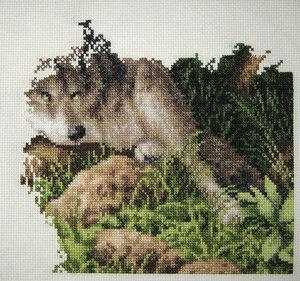 Планируем совместный отшив волков!!! 0_946dc_35bff1f3_M.jpg