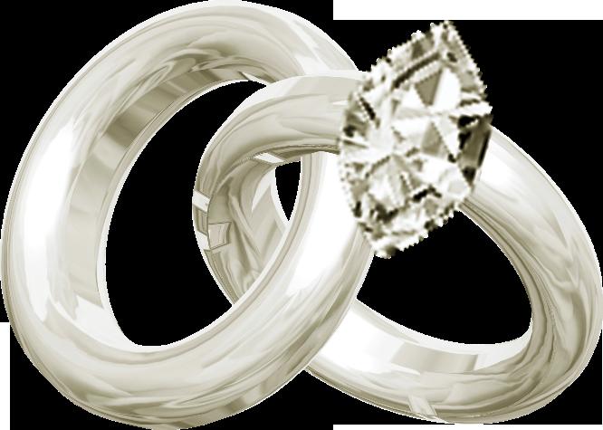 Обручальные кольца картинка на прозрачном фоне