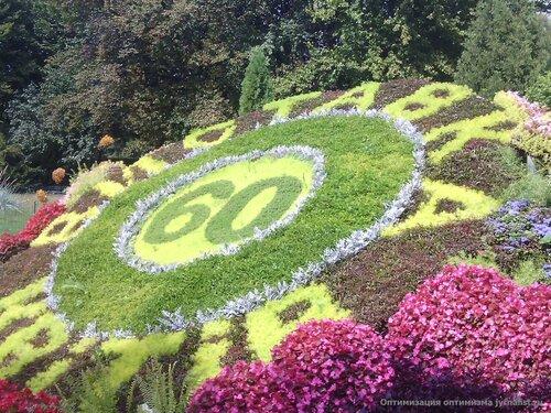 киев выставка цветов певчее поле