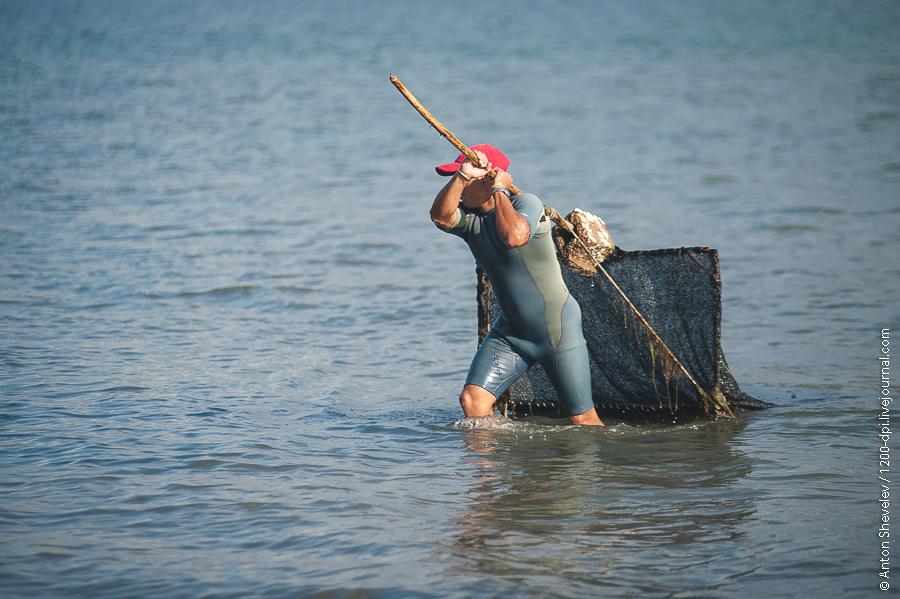 5 браконьеров, незаконно ловивших рыбу и креветок, задержаны в Запорожской и Луганской областях - Цензор.НЕТ 6565