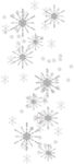 cvd catw08 snowflake trail +S.png