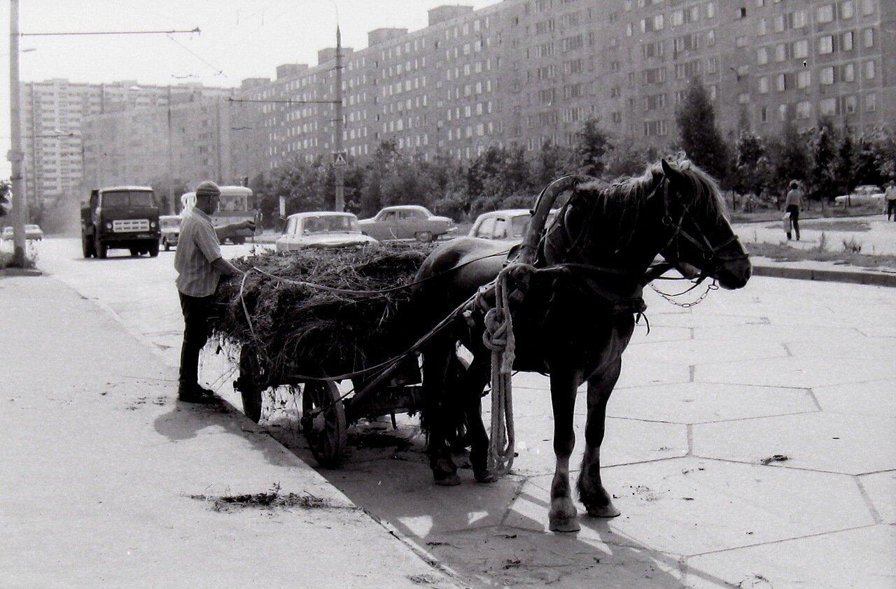1979 год.  Москва, Юго-запад,