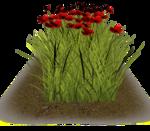 Lug_Grass_Flower (3).png