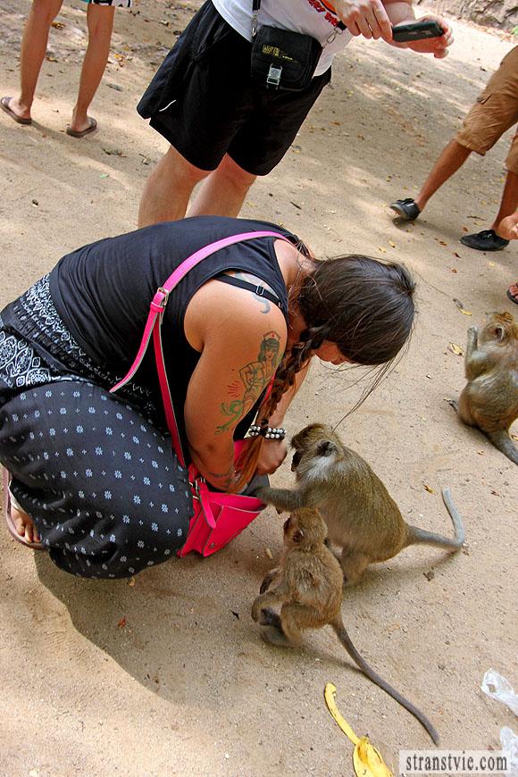 обезьяна хочет стащить сумку у девушки
