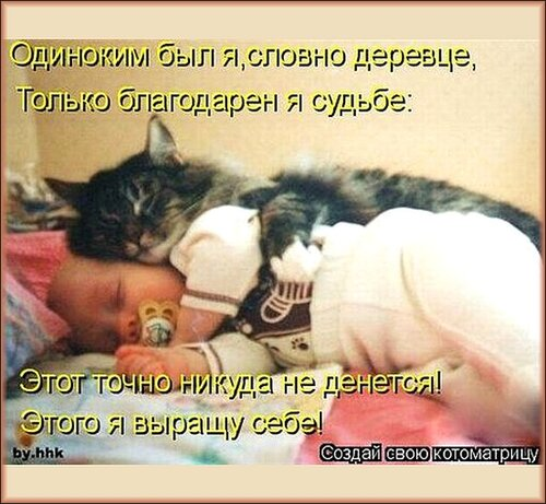 http://img-fotki.yandex.ru/get/4128/194408087.1/0_900e6_3c3ef9ca_L.jpg
