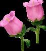 Скрап-набор Crazy Pink 0_b8be7_323fc185_XS
