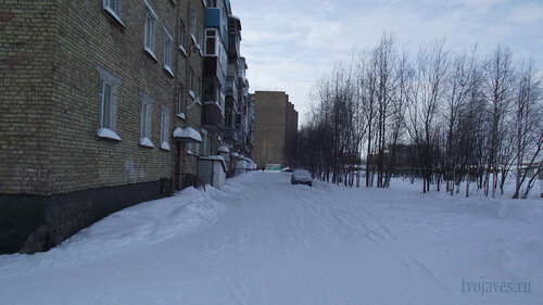 Фото города Инта №3603  Двор Мира 36 (северная сторона дома) 19.02.2013_11:58
