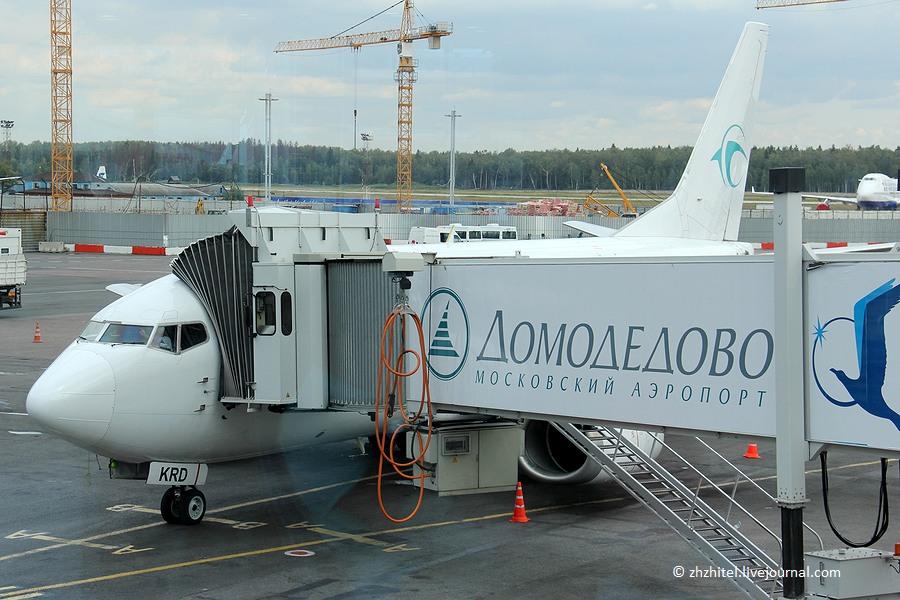 AirOnix в аэропорту Домодедово