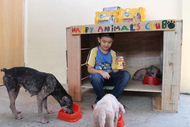 9-летний Кен устроил вгараже самодельный приют для бездомных собак.